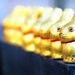martina_escuderowolf_lindt_bunnies